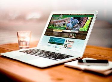 Desarrollo y diseño de paginas web Perú